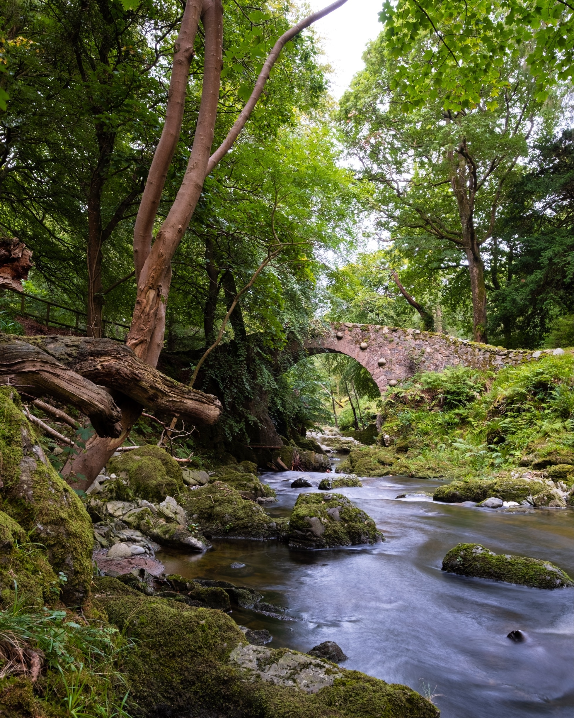 Visit Tollymore Forest Park In Newcastle Expedia