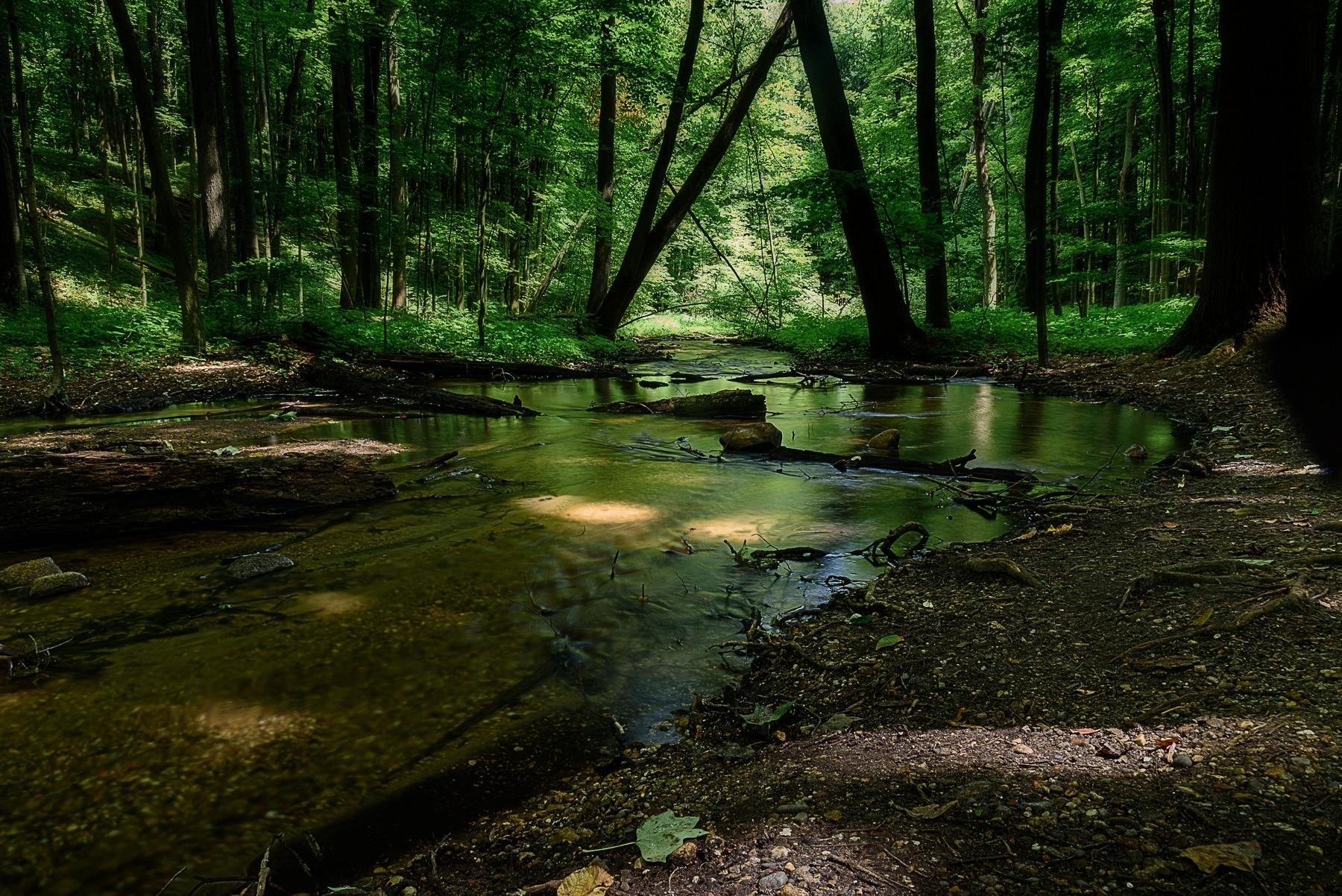 Kalamazoo Nature Center, Kalamazoo, Michigan, United States of America