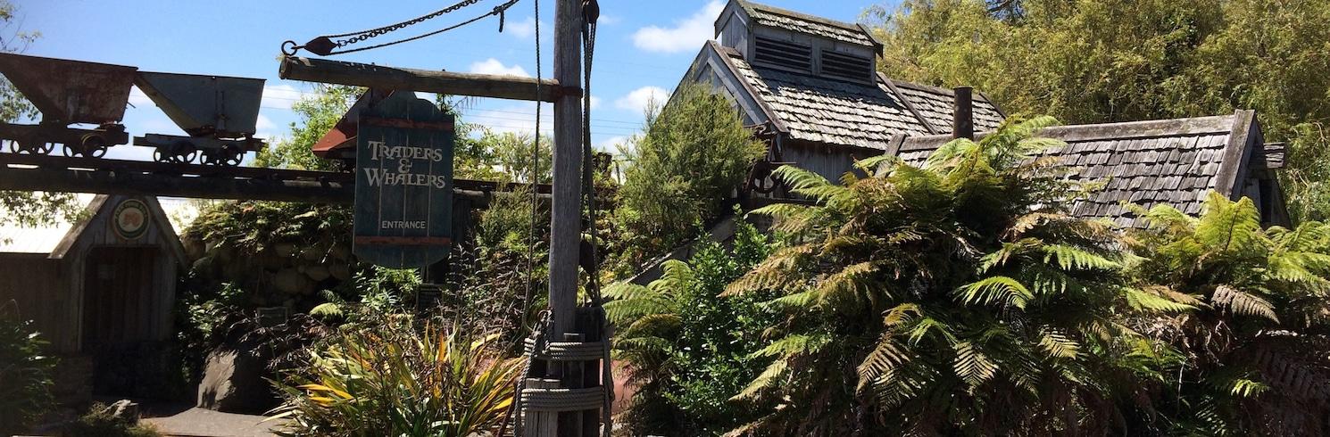 Χαγουέρα, Νέα Ζηλανδία