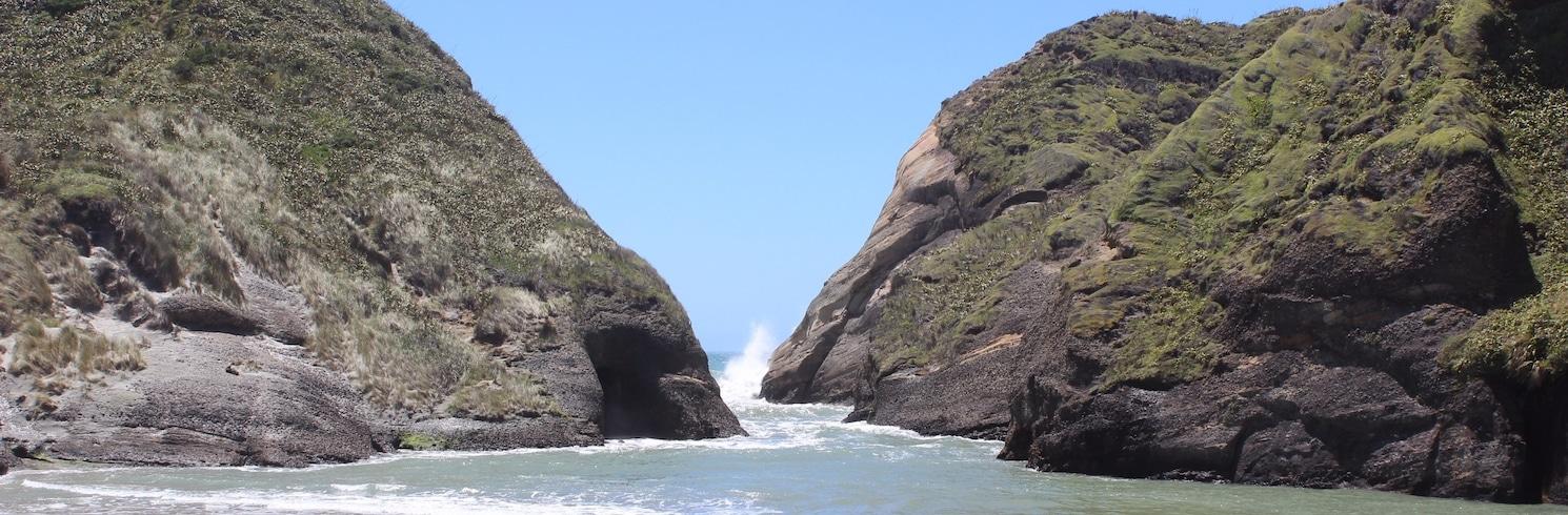 Kosa Farewell, Nový Zéland