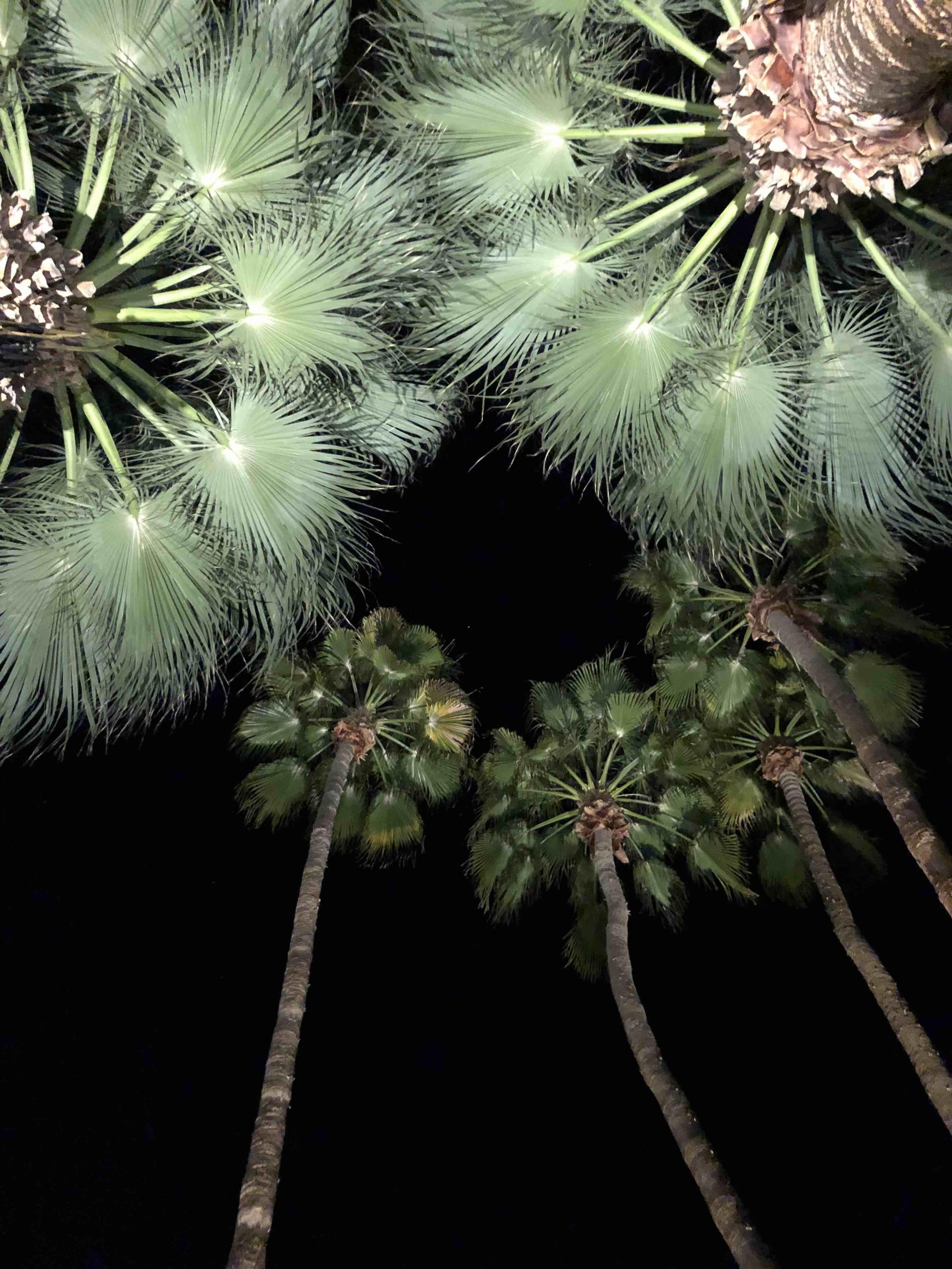 Tahquitz River Estates, Palm Springs, California, United States of America