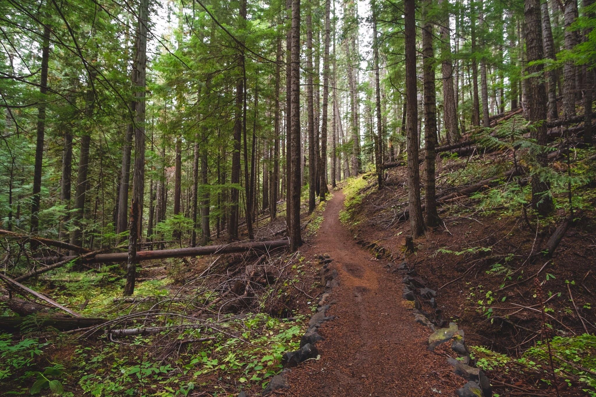 Latah County, Idaho, United States of America