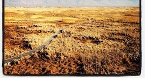 Great Salt Lake Küstenreservat