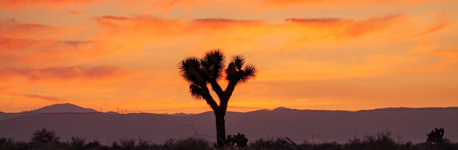 Palmdale, California, United States of America