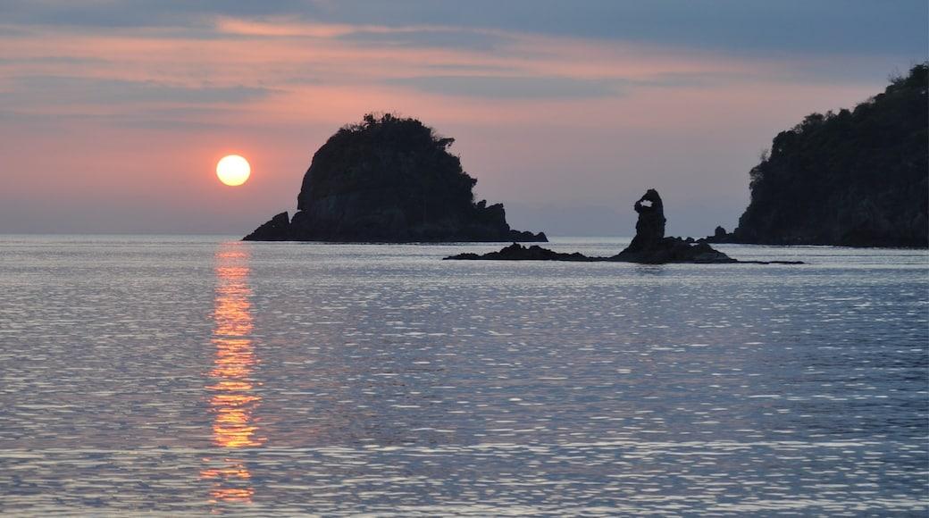 Photo by Naoki Iida
