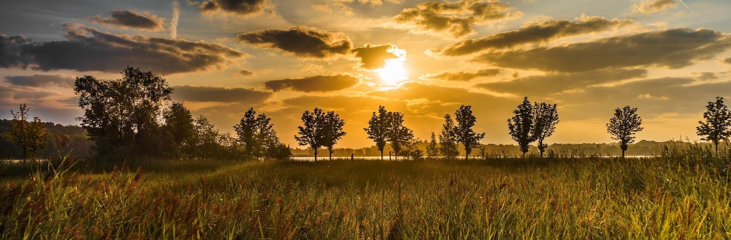 הלמונד, הולנד