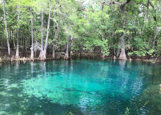 Chiefland, Florida, Amerika Serikat