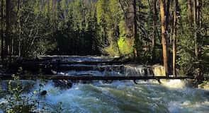 Adams Falls Trail
