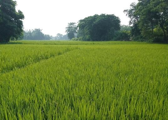 Purulia, India