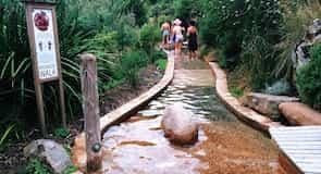 Pennisula Hot Springs