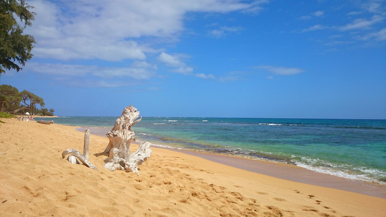 Islander on the Beach, Kapaa, Hawaii, United States of America