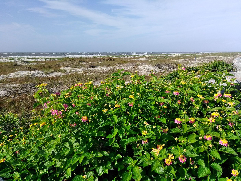 Fripp Island, South Carolina, United States of America
