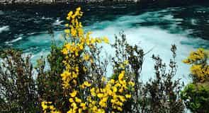 Saltos del Petrohué (vodopády)