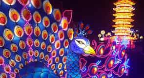 史那格港文化中心及植物園