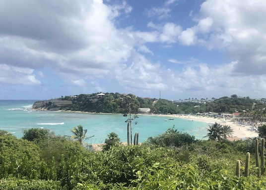 Willikies, Antigva ir Barbuda