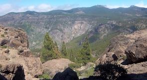 Las Nieves viršūnė