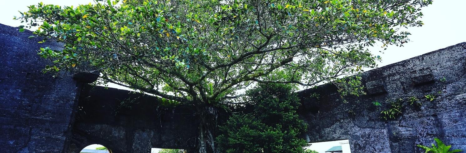 Lanyu, Tajvan