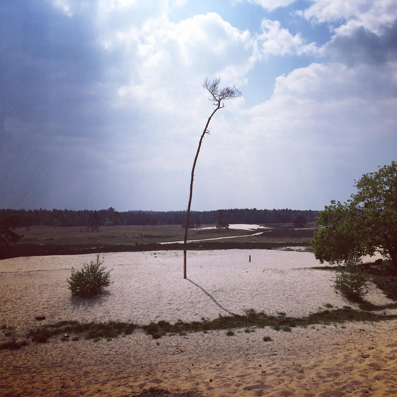 Loon op Zand, Nord-Brabant, Niederlande