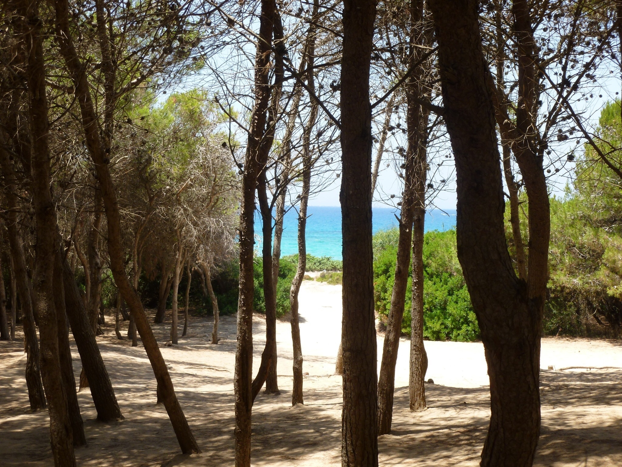 Lido Punta della Suina, Gallipoli, Apulië, Italië