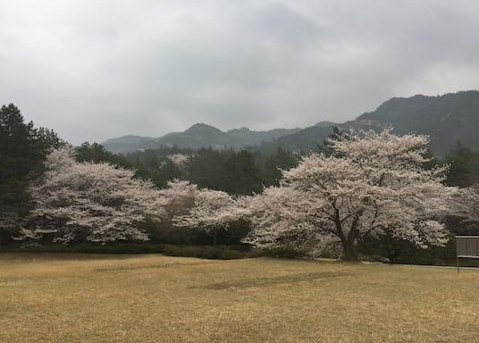 Gunseo, South Korea
