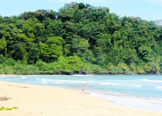 Bastimentos sala, Panama