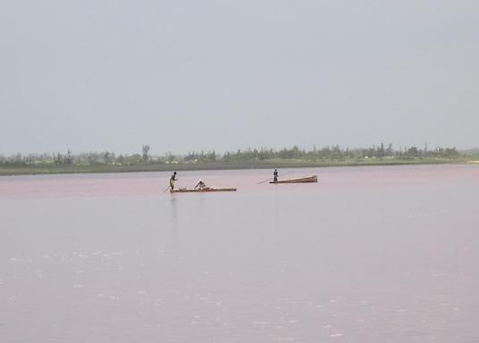 Niaga, Senegal