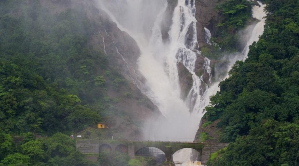 Photo by SandeepaChetan's Travels