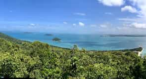 Dunk Island Beach (rand)
