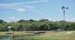 Πάρκο Stagecoach Park