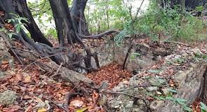 Бон-Аккорд-Вілидж