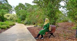 Jardins botaniques Kings Park