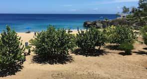 Praia Alicia