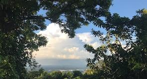 Brownsberg Park
