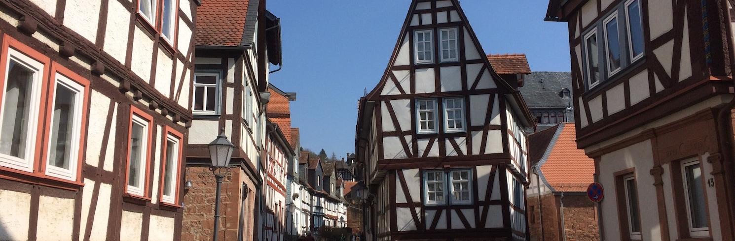 ノイヴィーダームス, ドイツ