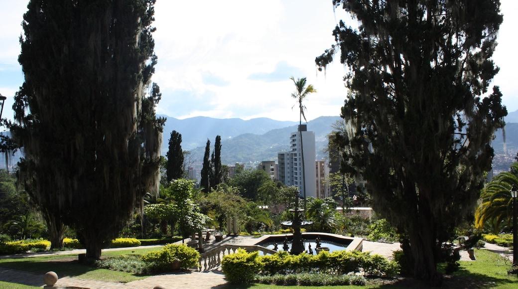Photo de  Bajo El Mismo Sol