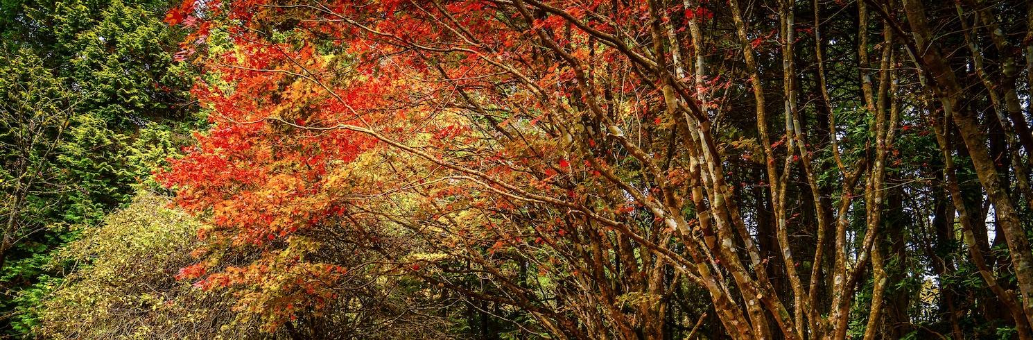 Mount Wilson, New South Wales, Austraalia