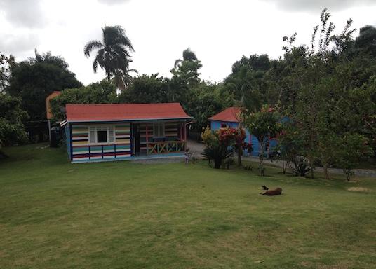 هيجي, جمهورية الدومينيكان