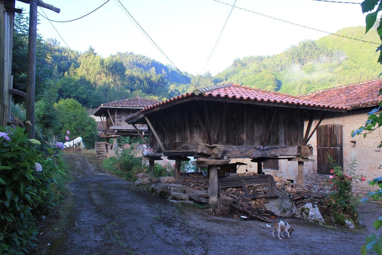 Grado, Asturias, Spanien