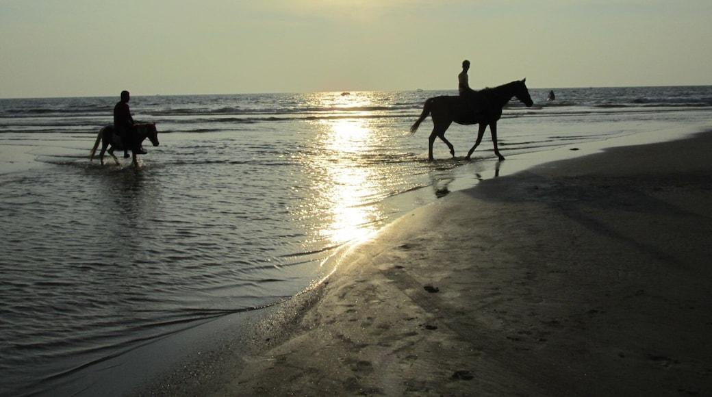Foto de Sachendra Yadav