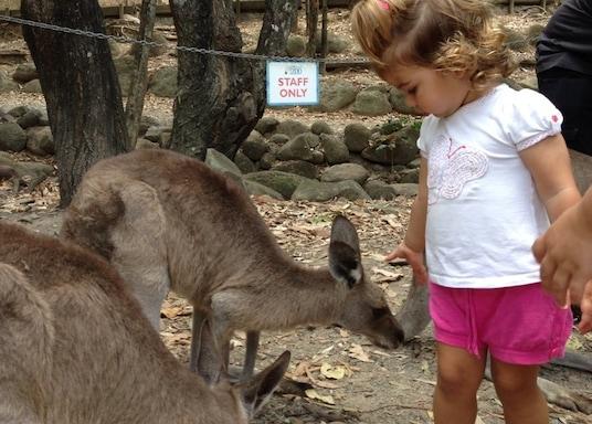 Кэрнс и окрестности, Квинсленд, Австралия