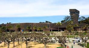 מוזיאון דה יאנג