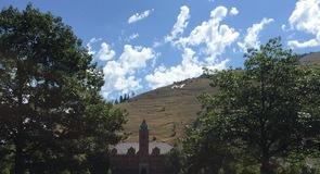Háskólinn í Montana