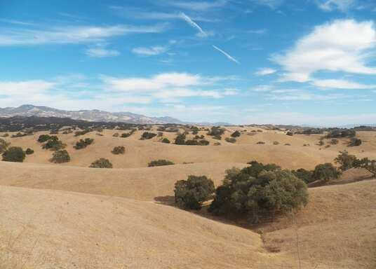Los Olivos, Kalifornien, USA