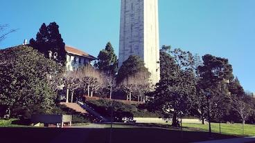 มหาวิทยาลัยแคลิฟอร์เนีย