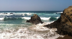 Inglenook Fen-Ten Mile Dunes Nature Preserve