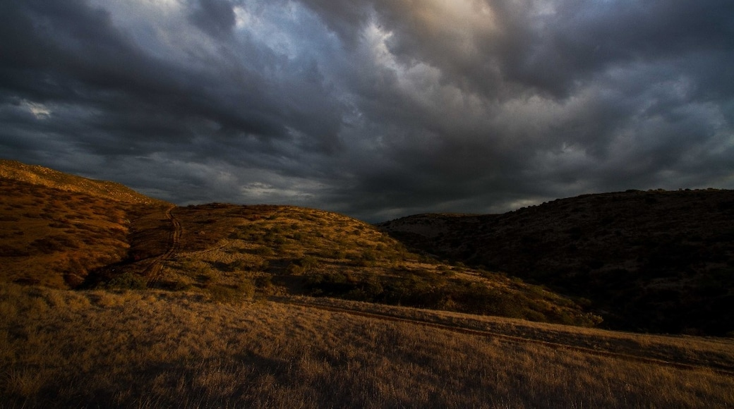 Photo by trenton.badillo