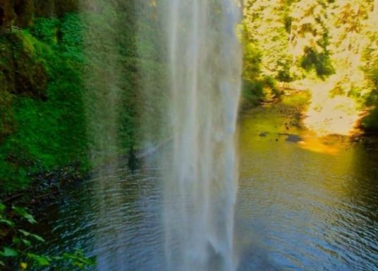 Junction City, Oregon, USA