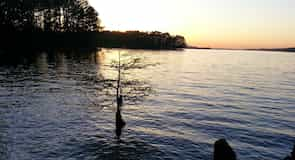 Državni park Lake Claiborne