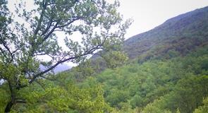 韋可斯峽谷國家公園