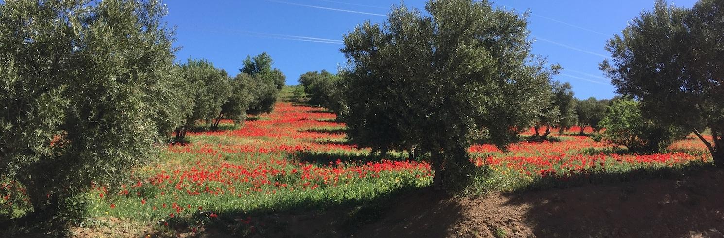 Таза, Марокко